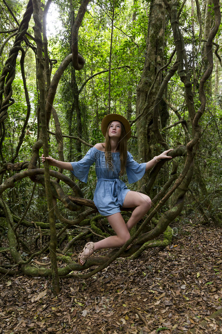 Young woman wearing a blue dress sitting between tree branches in tropical rainforest