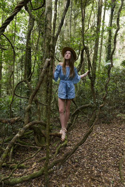 Young woman wearing a blue dress on tree branch in tropical rainforest