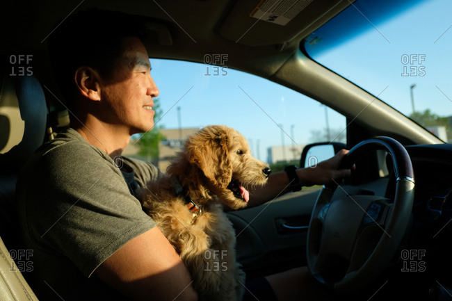 Man driving car while holding puppy in his lap