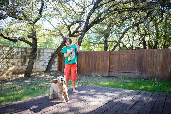 Boy playing in backyard with a puppy