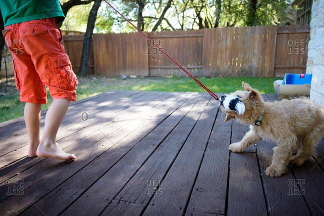 Child playing in backyard with a puppy