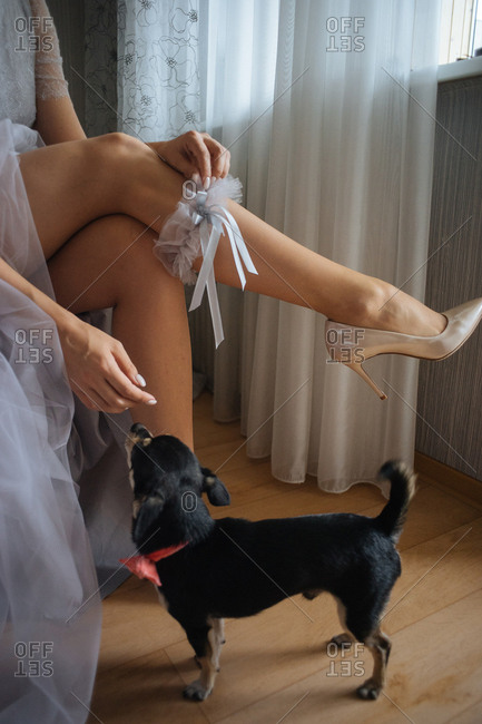 Bride pets her dog while putting on garter