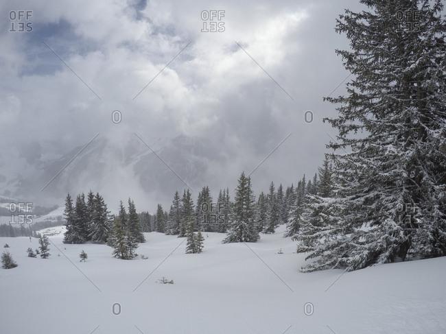 Snowstorm in the Saalbach-Hinterglemm, Austria