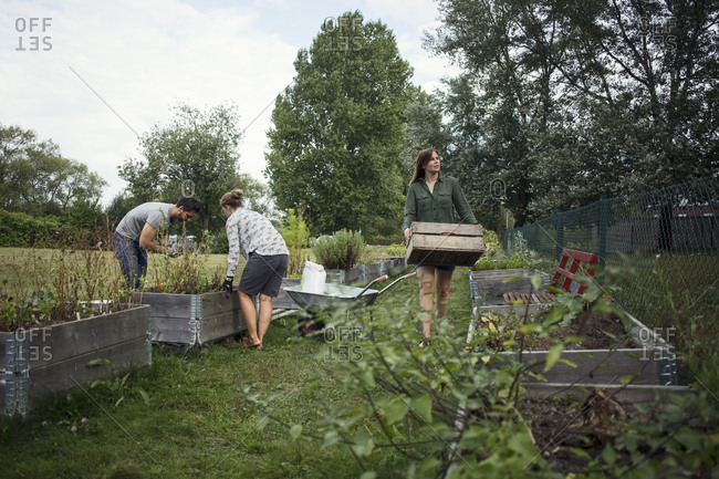 People working in community garden