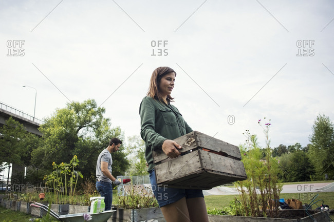 Mid adult woman carrying wooden crate while man planting in background at urban garden