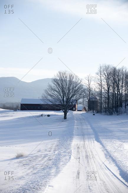A farm in winter, Brandon, Vermont