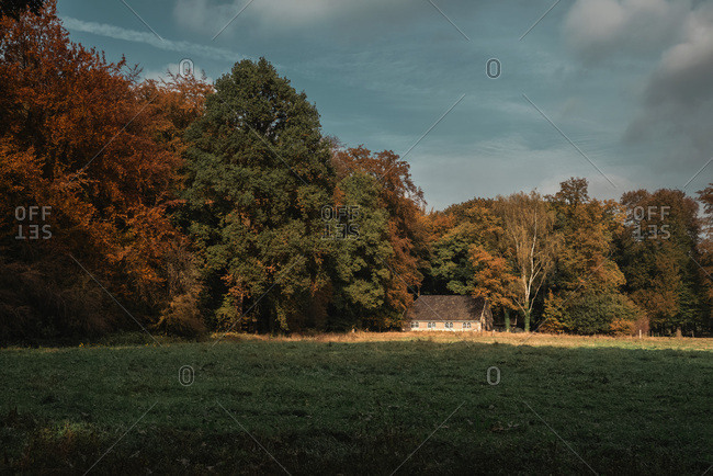Old farmhouse lit by sunlight between autumn trees.