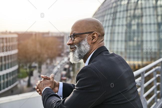 Portrait of a mature businessman