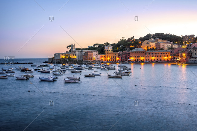 Italy- Liguria- Sestri Levante at dusk