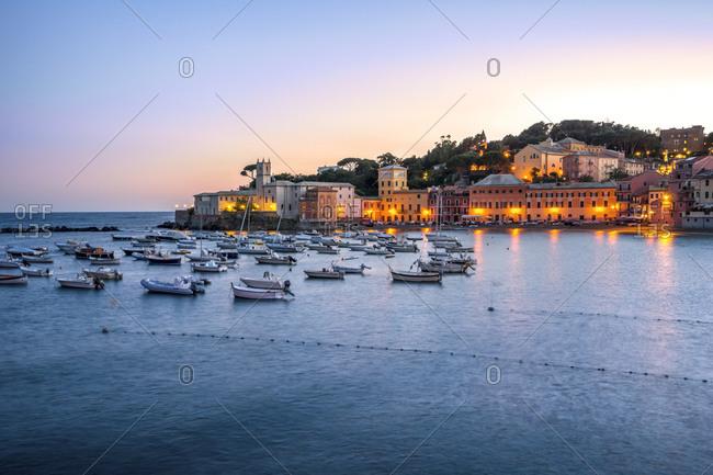 Italy- Liguria- Sestri Levante at dusk