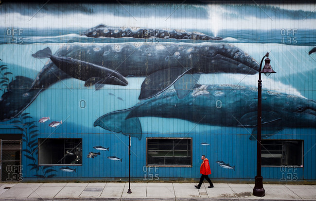 Newport, Oregon, USA - March 24, 2011: NEWPORT, OREGON, USA.  A fisherman walks beneath a mural of whales on a wall near downtown Newport, OR.