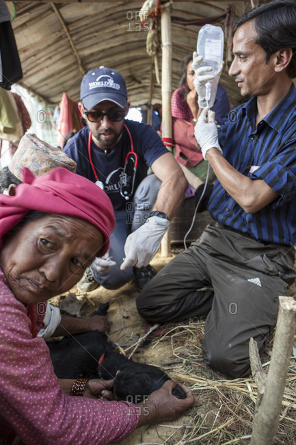 Lele Village, Bagmati, Nepal - May 4, 2015: World Vets International Aid  for Animals Team helping villagers to rescue and treat animals in Lele Village, 16 Kms from Patan. Nepal.