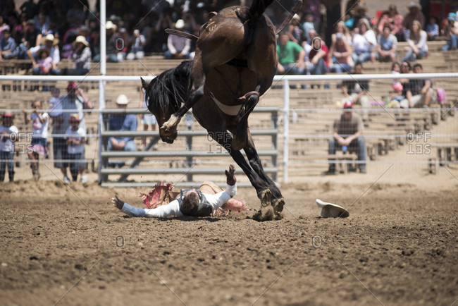 Woodlake, CA, USA - May 10, 2015: A cowboy hits the ground after being bucked from his horse  at the Woodlake Lions Rodeo rodeo in Woodlake, Calif.