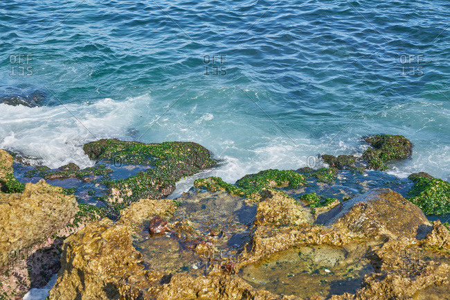 Waves crashing on moss-covered rocks on the Havana coastline