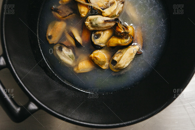 Mussels cooking in large pot on stove