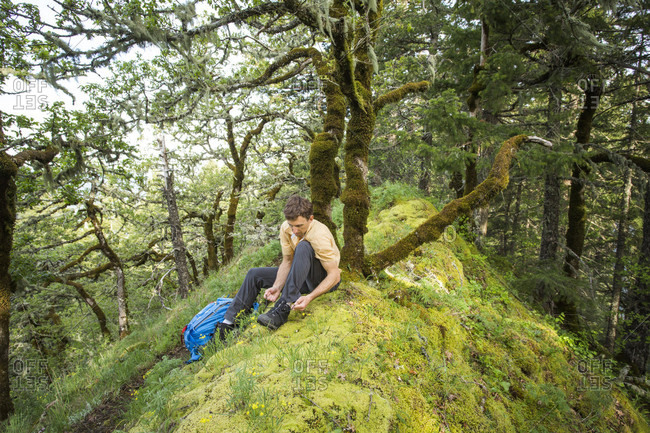 A Man Ties His Boots On A Mossy Trail Beside Moss-covered Oak Trees