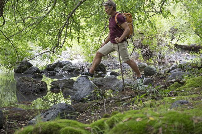 Hiker balances on rocks below forest canopy, stream edge