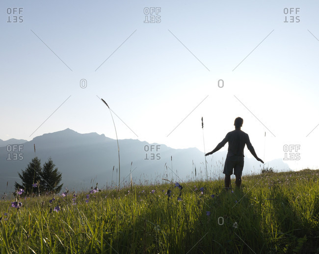 Mature man walks into the sun through alpine flowers