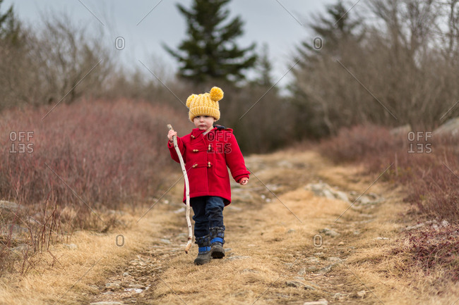 Toddler boy hiking on trail with walking stick