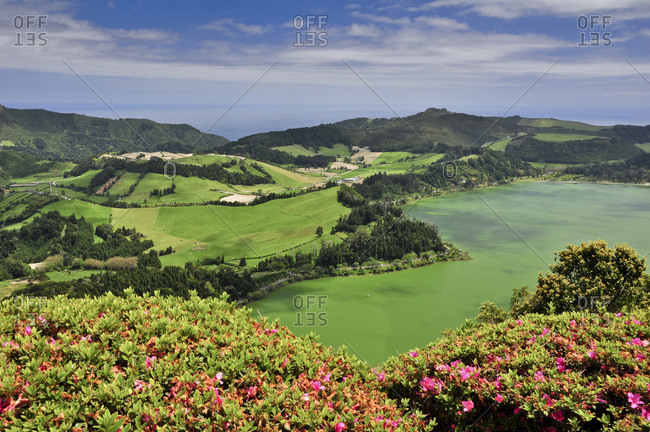 Green crater lake Lagoa das Furnas, caldeira, surrounded by flowers and terraces, viewing point Pico do Ferro, Furnas, Povocao, island of Sao Miguel, Azores, Portugal, Europe, Atlantic Ocean