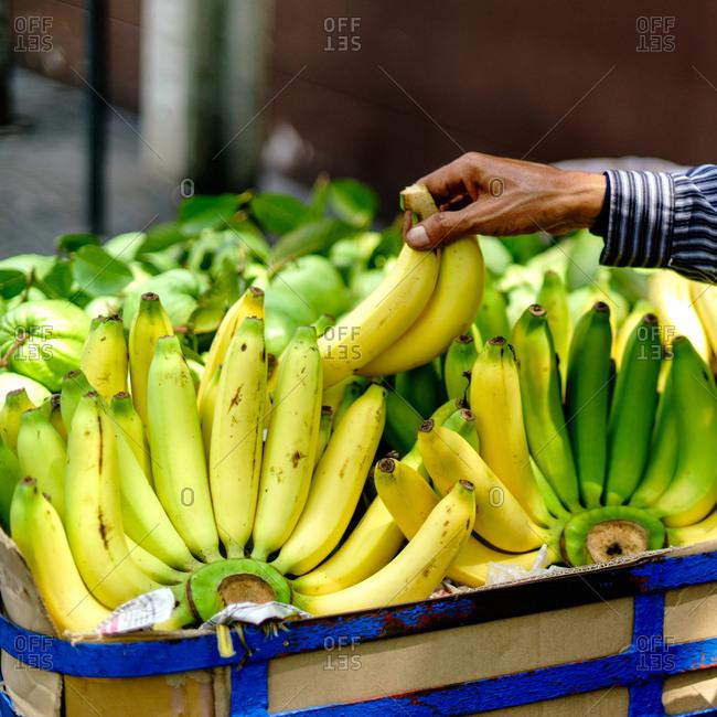 Banana's for sale in Bangkok, Thailand