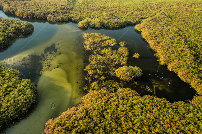 An aerial view of in Botswana's Okavango Delta.