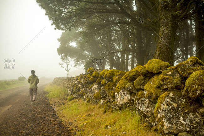 A person walks along a road lined by a moss covered stone wall.