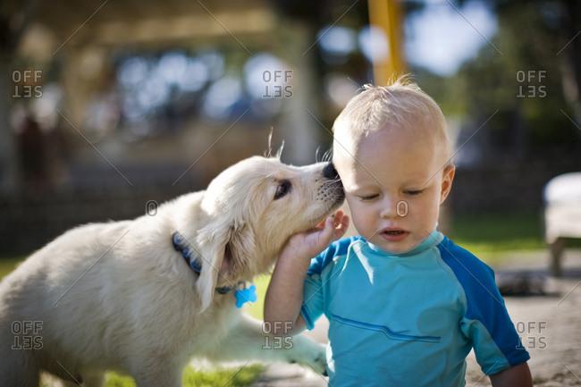 Puppy nuzzling a baby boy