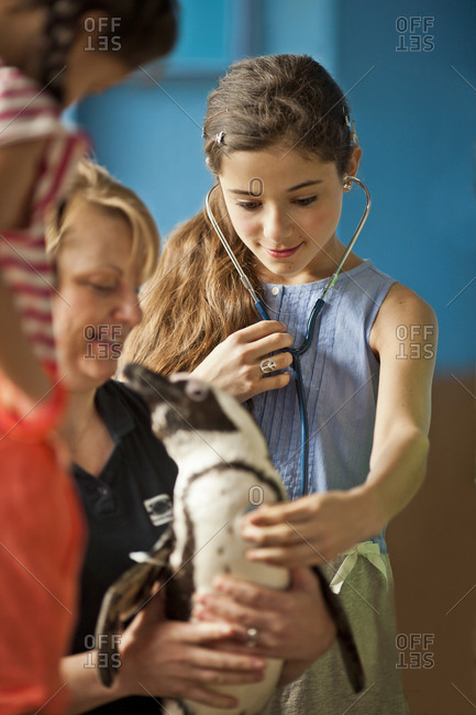 Children listening to a penguin's heartbeat at a wildlife centre
