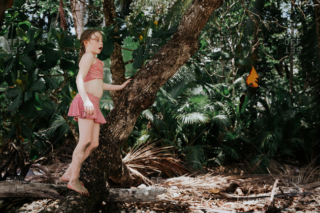 Girl wearing bathing suit standing on tree trunk in tropical rainforest in Costa Rica
