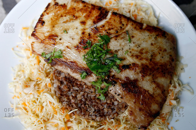 Sauteed piece of fish on shredded cabbage