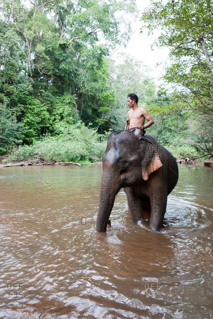 Sen Monorom, Mondulkiri, Cambodia - January 25, 2017: Mahout and his asian elephant in the river