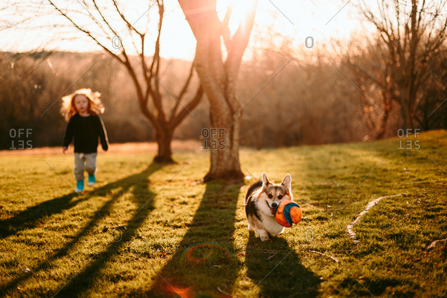 Child and dog playing ball in yard