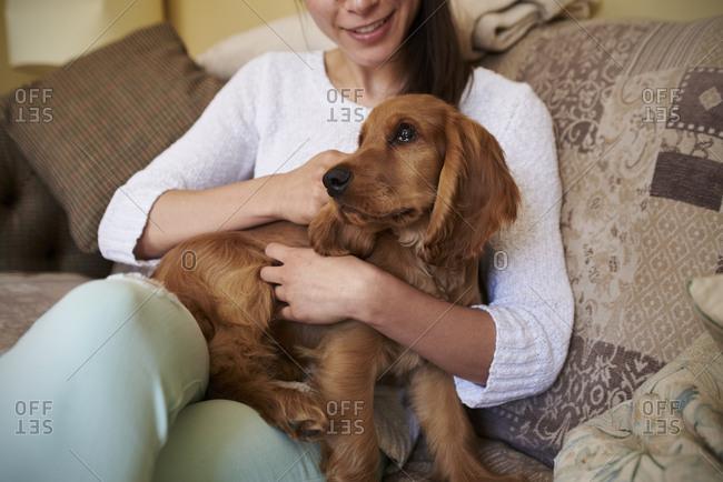 Close Up Of Cocker Spaniel Owner Cuddling Dog On Sofa