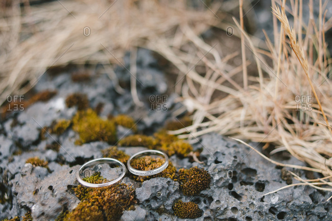 Wedding rings resting on moss on volcanic rock