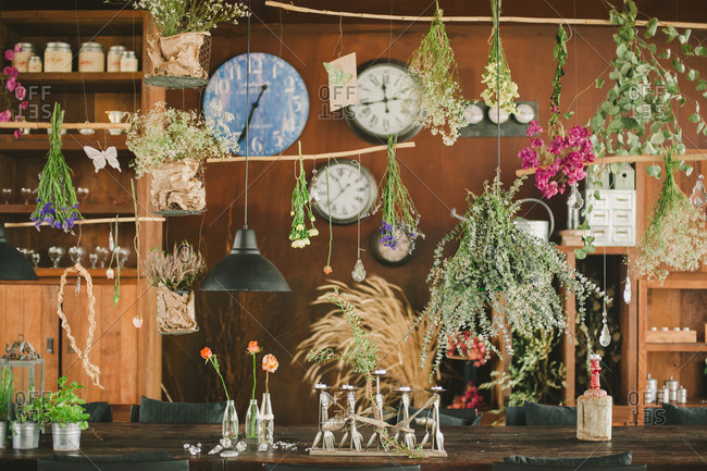 Variety of dried flowers hanging above a rustic wooden table
