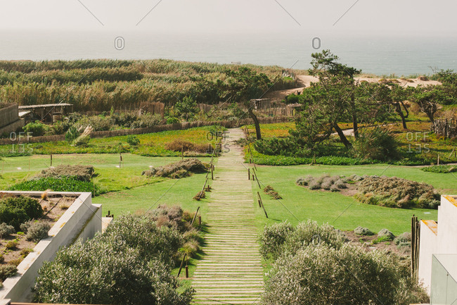Boardwalk through a garden leading to dunes overlooking the sea