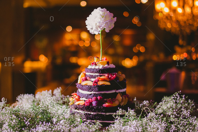 Layered chocolate dessert decorated with fruit and flowers