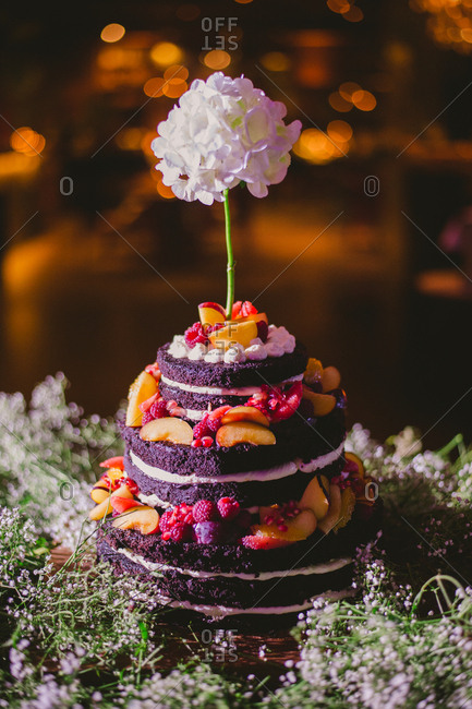 Chocolate layer cake decorated with flowers and fruit