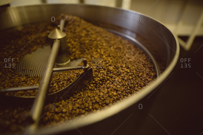 Coffee beans poured inside coffee roasting machine in coffee shop