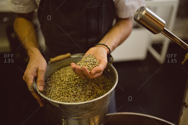 Barista checking coffee beans in roasting machine in coffee shop