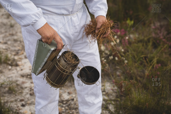 Midsection of male beekeeper filling dry grass in bee smoker at field