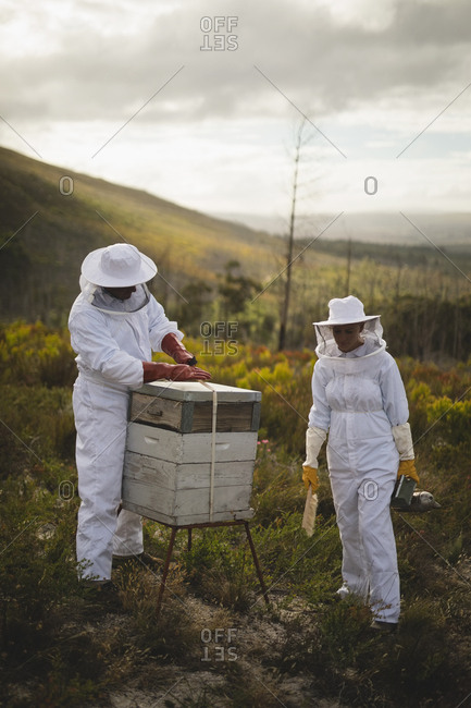 Full length of male and female beekeepers working on beehive at apiary