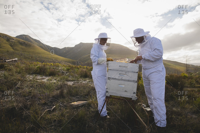 Full length of male and female apiarists working on beehive at apiary