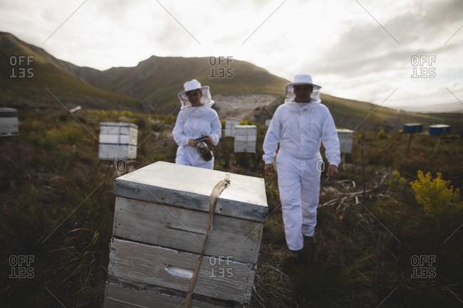 Male and female beekeepers working on beehives at apiary