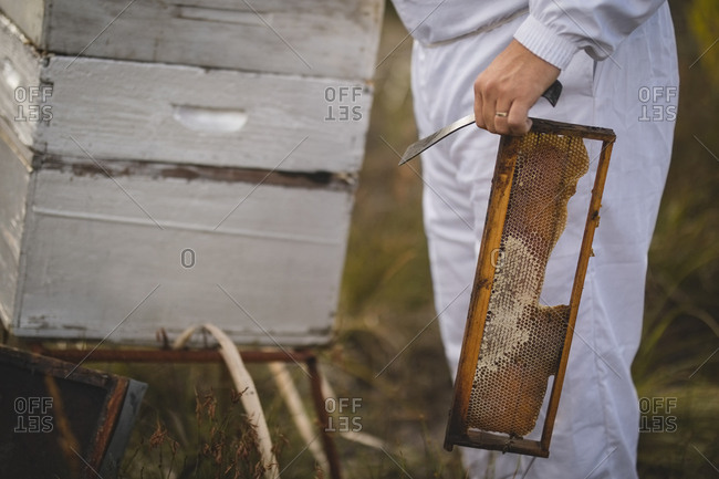 Midsection of male beekeeper holding hive frame and scraper at apiary