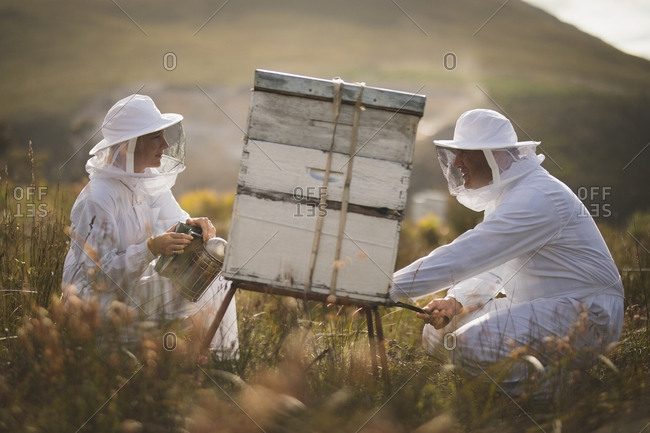Side view of male and female beekeepers working on beehive at apiary