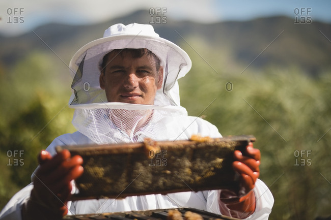 Portrait of male apiarist holding hive frame at apiary