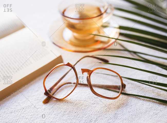 Broken eye glasses with a book and palm fronds