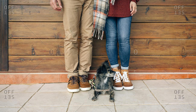 Low section of couple with dog standing in front of wooden wall